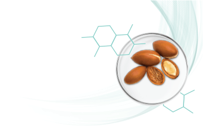 Actiblend - Oil Balance with Active Complex Based on Argan Seeds